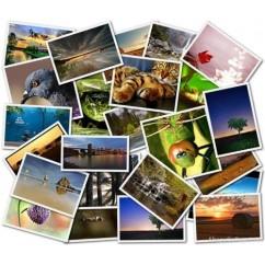 CONVERSION DE FOTO O IMAGEN